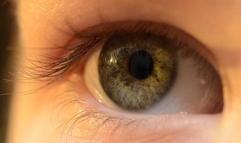Reddit CEO got LASIK Eye Surgery to Prepare for Apocalypse